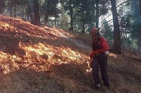 Bc Wildfire Management Facebook by Wildfire Threat Eases Light Rain Expected Thursday Ashcroft