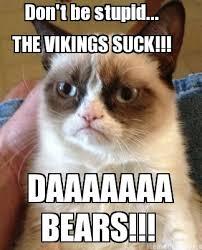 Vikings Suck Meme - meme creator the vikings suck don t be stupid daaaaaaa bears