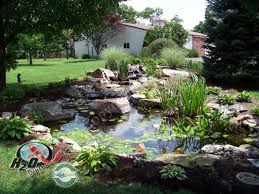 h2o designs ky fish ponds fountains waterfalls maintenance