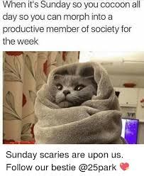 Its Sunday Meme - 25 best memes about its sunday its sunday memes