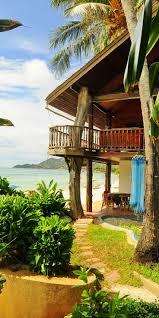 best 25 chaweng garden beach resort ideas on pinterest ko samui