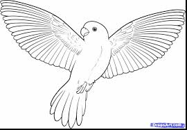 outstanding flying bird drawing with bird coloring page