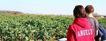 lancement des parcours de compétences en agriculture sur le formation ingénieur en agronomie et agro indusries par apprentissage