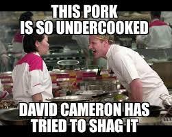 David Cameron Memes - david cameron pig memes go viral oink oink
