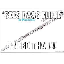 Flute Memes - memes for obsessed flute players home facebook