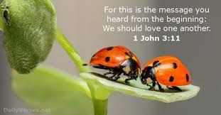 1 john 3 11 bible verse dailyverses net