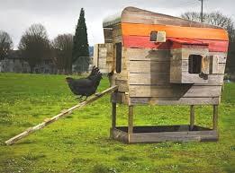 House Design And Ideas Best 25 Chicken Coop Pallets Ideas On Pinterest Pallet Coop