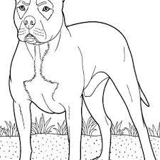 cute boxer dog pug coloring pages place color
