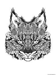 kitten difficult cat coloring pages printable