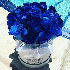 blue roses delivery fresh blue roses miami roses box miami delivery
