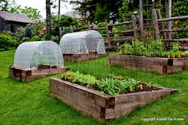 Raised Garden Beds From Pallets - fetching garden landscaping design and decoration using rustic