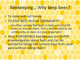 honey bees ms madlon ppt video online download