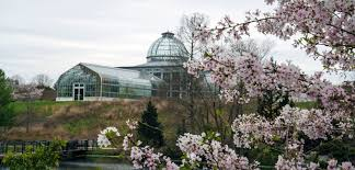 lewis ginter botanical garden celebrates blooms and butterflies
