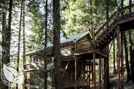 tree house rentals near fresno
