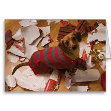 55 best christmas card ideas images on pinterest animals