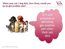 when a pet dies mo gannon associates ltd mg a veterinary market research when