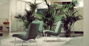 Plants That Need Low Light Indoor Plants Tropical Home Designs Sherman Oaks Landscape Designer