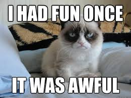Grumpy Cat Meme I Had Fun Once - i had fun once it was awful this is funny because my history teacher