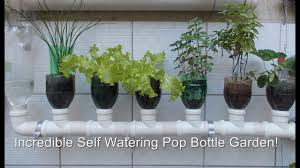 Self Watering Vertical Garden Bottle Garden The Incredible Self Watering Pop Grow System 2 Youtube