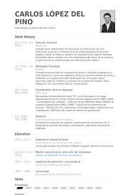 General Resume Example by Director General Resume Samples Visualcv Resume Samples Database