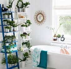 bathroom dazzling cool ikea bathroom ladder plant