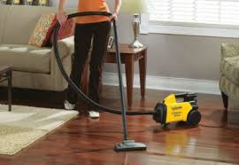 just what is the best vacuum for hardwood floors and hair