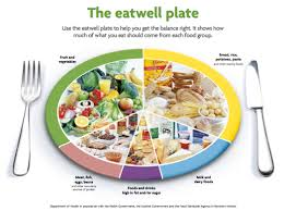 balanced diet chart free download clip art free clip art on