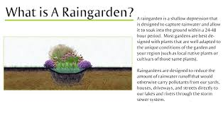 native plants for rain gardens raingarden information metro blooms