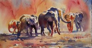 hazel soan google search elephants pinterest colour