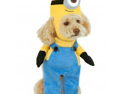 Baby Minion Costume Dog Minion Costumes Korrectkritterscom