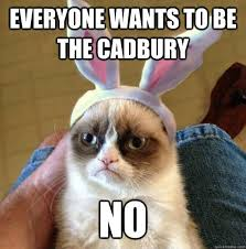 Grumpy Cat Meme Love - 41 best grumpy cat easter images on pinterest grumpy cat grump