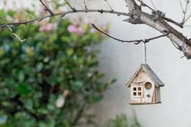 Cool Bird House Plans Best Dimensions For Bird House Entrance Holes