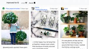 layout instagram pc how to view saved instagram photos on a pc