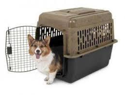porta cani per auto trasportino o kennel per cani taglia grande media anche per auto