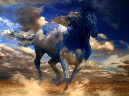 ferrari horse wallpaper free horse wallpaper 1024x768 1421