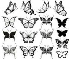 butterfly black and white signed glicee by studiojardine