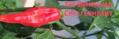 High Heat Plants Birmingham Chill Company Product Categories High Heat Chilli