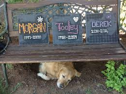 headstones for dogs 29 best ceramic picture for headstone ceramic photo for headstone
