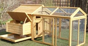 Backyard Chicken Coop For Sale by Chicken Coops Direct