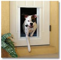 Exterior Cat Door Exterior Door With Pet Door And Other And Cat Door Solutions