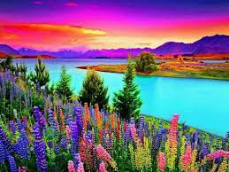 colorful nature best relaxing video by amazingpandph youtube