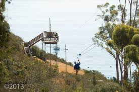 Backyard Zip Line Without Trees by Zip Line Eco Tour Catalina Island Visit Catalina Island