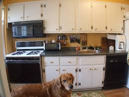 how to repaint kitchen cabinets sunset kitchen decoration