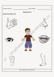 worksheet for class 1 evs body parts parts of the body worksheet