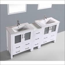 bathroom magnificent unusual bathroom vanities traditional