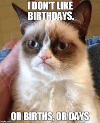 Birthday Animal Meme - top 100 original and hilarious birthday memes