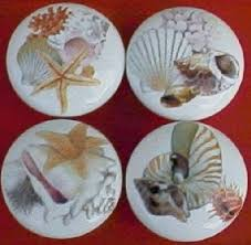 Pretty Cabinet Knobs Cabinet Knobs Sea Shells Dolphins Trout Game Fish Seashells Pulls