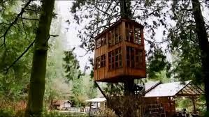 Treehouse Point Wa - world u0027s most ultimate treehouses treehouse masters animal planet