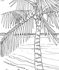 coloring pictures of a palm tree palm tree coloring pages mirotvorec