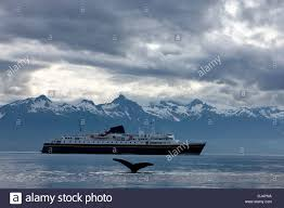 Alaska Marine Highway Map by Humpback Whale Surfaces Near The Alaska Marine Highway Ferry Mv
